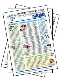 percarenewsletters